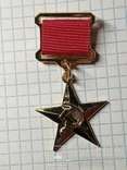 Звезда героя Соц. труда копия, фото №2