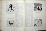 Искусство книги, фото №6