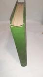Энциклопедический словарь Гранат. Том 17, фото №8