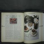Приглашение к чаю История Распространение Природа 2002, фото №9