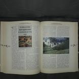Приглашение к чаю История Распространение Природа 2002, фото №11