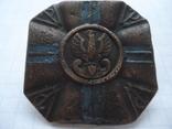 Польський полковий знак, фото №11