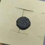 Монета Иудея, прута, прокуратор Понтий Плат (1-13.5), фото №2