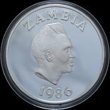 10 Квача 1986 Птица - Всемирный фонд дикой природы (Серебро 0.925, 27.22г), Замбия, фото №3