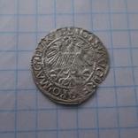 Півгріш 1559р., фото №5