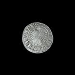 Півгрош 1510 р., фото №3