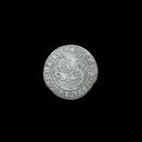 Півгрош 1514 р., фото №2