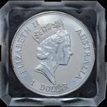 1 Доллар 1992 Кукабарра 1oz, Австралия Унция, фото №3