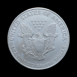 1 Доллар 1997 Шагающая Свобода (Серебро 0.999, 31.1г) 1oz, США Унция, фото №3