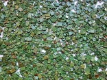 КМ,зелёный 1 кг, фото №7