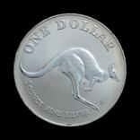 1 Доллар 1993 Кенгуру 1oz, Австралия Унция, фото №2