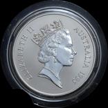 1 Доллар 1995 Кенгуру 1oz, Австралия Унция, фото №3