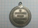 Медаль за беспорочную службу в тюремной страже Ал.3 копия, фото №2
