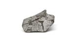 Заготовка-вставка з метеорита Seymchan, 3,4 г, із сертифікатом автентичності, фото №11