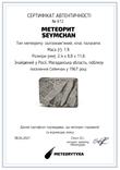 Заготовка-вставка з метеорита Seymchan, 1,9 г, із сертифікатом автентичності, фото №3