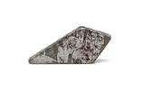 Заготовка-вставка з метеорита Seymchan, 1,4 г, із сертифікатом автентичності, фото №5
