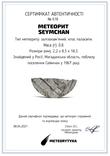 Заготовка-вставка з метеорита Seymchan, 0,8 г, із сертифікатом автентичності, фото №3