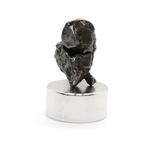 Залізний метеорит Campo del Cielo, 1,3 грам, із сертифікатом автентичності, фото №7