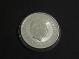 Австралия 1 Лунар - Год Собаки, 2006 - серебро 999, унция, 1 доллар, фото №3
