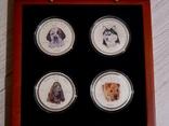 Набор из 4 монет - Год Собаки - серебро 999 - ПОЛНЫЙ КОМПЛЕКТ, фото №3