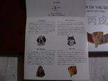 Набор из 4 монет - Год Собаки - серебро 999 - ПОЛНЫЙ КОМПЛЕКТ, фото №6