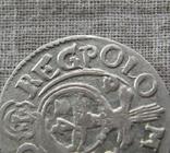 Полторак ( 1/24 талера ) 1623 года. Сиг. ІІІ Ваза. REGPOLO ( Без Разделительных Знаков )., фото №3