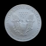 1 Доллар 2000 Шагающая Свобода (Серебро 0.999, 31.1г) 1oz, США Унция, фото №3