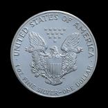 1 Доллар 1988 Шагающая Свобода (Серебро 0.999, 31.1г) 1oz, США Унция, фото №3