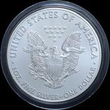1 Доллар 2016 Шагающая Свобода / Лейф Эрикосн (Серебро 0.999, 31.1г) 1oz, США Унция, фото №3