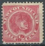 Бе02 Британские колонии. Ньюфаундленд 1887 №35* (17 евро), фото №2