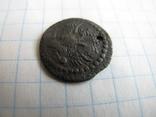 Полуполушка 1700 года, фото №8