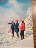 Лыжницы, фото №6