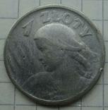 1 злот. 1924 год, Польша., фото №5