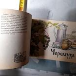 """Кощеев """"Нипитки из дикорастущих ягод и грибов"""" 1991р., фото №5"""