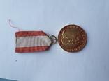 Медаль 1, фото №4