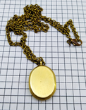 Кулон янтарь пейзажный в бронзе, 19.65 грам, фото №3