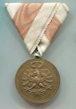 Австро-Венгрия. Тирольская медаль в память Войны 1914-1918, фото №3