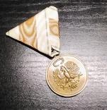 Австро-Венгрия. Тирольская медаль в память Войны 1914-1918, фото №2