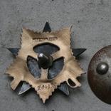 Орден ов 1 степени. штрал і сим копія, фото №6