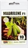 Насіння самозапильного огірка Мадрілене (Madrilene) F1 10 шт 200471, фото №2