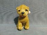 Новый Питбуль Англия Игрушка Собака на поводке, фото №12