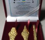 Україна 2020 набір монет гривня київська чернігівська новгородська сертифікат копии, фото №4