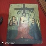 Іісус Христос Виноградна Лоза., фото №3