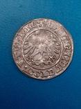 Полугрош 1513 года. Литовский, фото №3