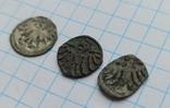 Денарії (Варненчика, Ягеллончика,Ольбрахта), фото №9