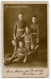 Германская Империя. 1915. Сыновья Кронпринца, фото №3