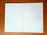 С праздником 1 мая, 1963, издательство: художник РСФСР, худ. Ю. Кириллин, тираж 200 тысяч, фото №5