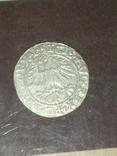 Полугрош 1561, фото №4