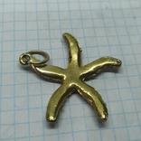Кулон Морская звезда. диаметр 40мм, фото №6
