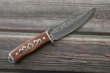 Охотничий нож Дамаск 21.5 cm, фото №4